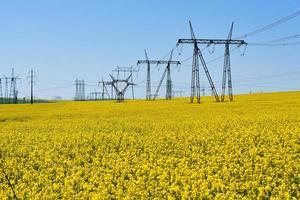 circuitos de alta tensão em um campo de uva e céu azul foto