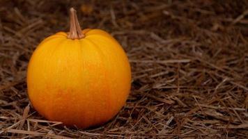 grande laranja abóbora fresca no feno foto