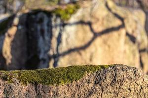 pedra coberta de musgo em um dia quente e ensolarado foto