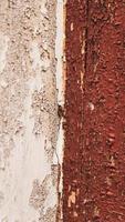 textura de madeira marrom vertical foto