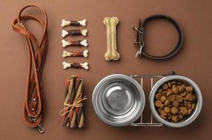 acessórios para animais de estimação natureza morta com tigela de comida e várias guloseimas foto
