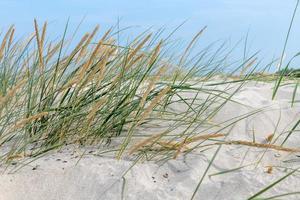 costa alemã do mar Báltico com dunas de areia grama, água e céu foto