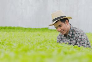jovem agricultor verificando felizmente a qualidade dos vegetais em uma fazenda de verduras hidropônicas foto