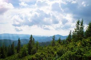 panorama das montanhas dos Cárpatos de colinas verdes na montanha do verão foto