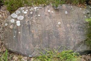 rochas de arenito com musgo e líquen coberto como pano de fundo foto