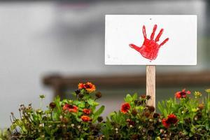 escudo com mão pintada de vermelho fica em um canteiro de flores com espaço de cópia foto