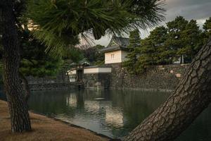 castelo edo em tokyo, japão no inverno foto