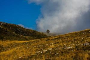 pastagens alpinas cercadas pelos picos dos pré-Alpes veroneses foto