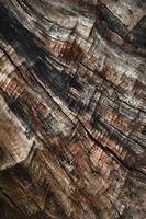 textura abstrata de coto velho e surrado foto