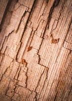 detalhe abstrato de madeira podre quebrada foto