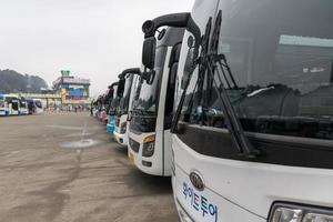 gangwon-do, coreia 2016 - ônibus trazem turistas para a ilha da república de naminara foto