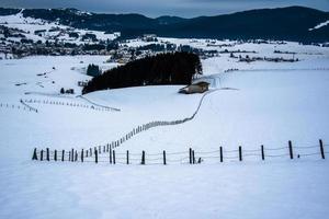 separações na neve um foto