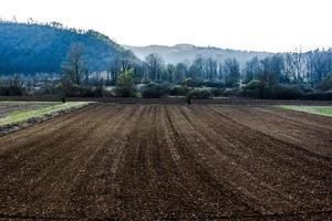 20210327 campos cultivados entre as colinas 2 foto
