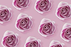 padrão de flores rosa rosa em fundo rosa foto