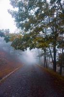 estrada na montanha com nevoeiro no outono foto