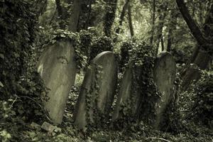 velhas pedras da sepultura foto
