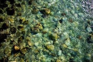 água e pedras foto