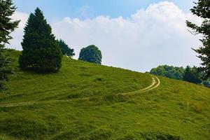 caminho em uma colina foto