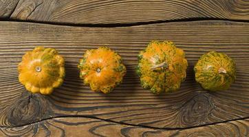 quatro abóboras decorativas em fundo de madeira queimada. foto
