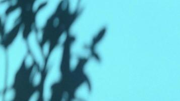 deixa sombras em papel azul pastel. backgorund abstrato. foto. foto