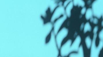 deixa sombras no papel de textura pastel azul. backgorund abstrato. foto. foto