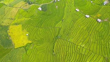 vista aérea da paisagem de campos de arroz verdes em socalcos com padrão diferente de manhã no norte da Tailândia foto