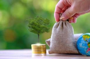 terra e moedas na mesa de madeira e economia de dinheiro e conceito de crescimento de negócios foto