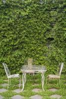 quintal verde inglês foto