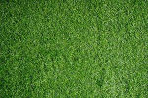 fundo o campo de gramado verde olha acima. foto