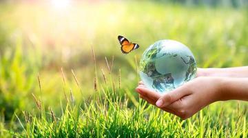 conceito salvar o mundo salvar o meio ambiente o mundo está na grama do fundo verde bokeh foto