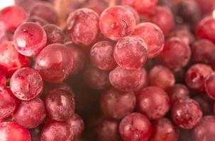 uvas maduras vermelhas com spray de água até a frescura após a colheita em fundo de madeira. foto