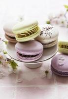 macaroons franceses coloridos foto