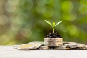 a árvore está crescendo em uma pilha de moedas e um fundo verde para calcular o crescimento financeiro e econômico. foto
