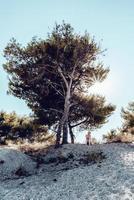 uma mulher triste ao lado da árvore morta. uma mulher loira triste e preocupada sentada ao lado de um pinheiro meio morto no solo rochoso. foto