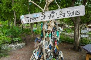 labuan bajo árvore cheia de sandálias foto