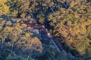 cai nova gales do sul austrália foto