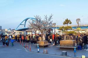 Seul, Coreia, 02 de janeiro de 2016 - visitantes fizeram fila para pegar uma balsa foto