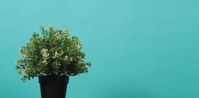 planta em vaso artificial em fundo de hortelã foto