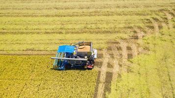 vista aérea superior da colheitadeira trabalhando no campo de arroz foto