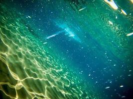 sob o mar foto