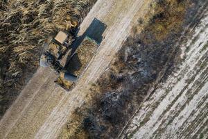vista aérea superior de cortadores de cana trabalhando ao ar livre foto