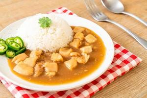 frango ao molho marrom ou molho de molho com arroz foto