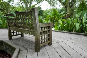 banco no jardim botânico de singapura foto
