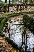 reflexões no lago do parque foto