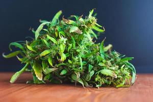 closeup de grande botão verde de maconha, maconha medicinal fresca foto