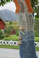 árvore de malha em eidfkord, noruega foto