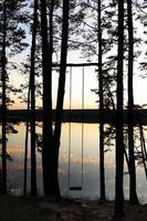 balanço feito à mão na floresta de pinheiros perto do lago ao pôr do sol foto