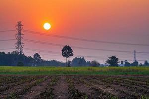 alta tensão ao pôr do sol foto