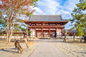 veados e portão do meio de todaiji em nara, japão foto