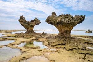 rochas em okinawa, japão foto